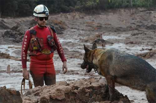 Foto da Operação do Corpo de Bombeiros em Brumadinho/MG)
